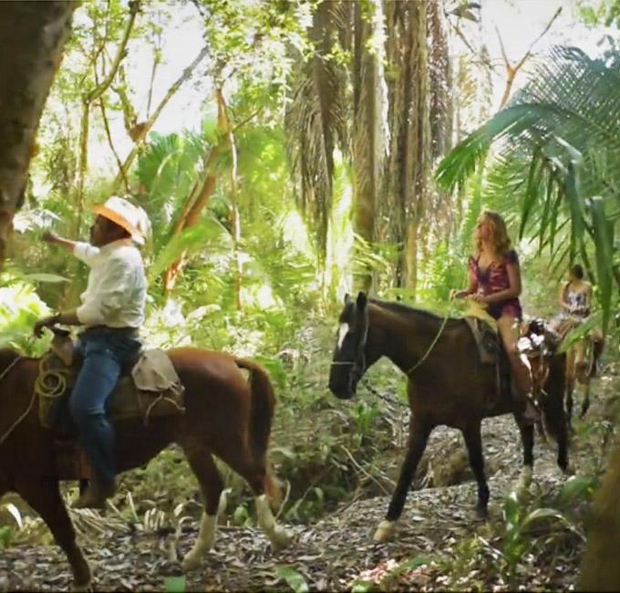 horse back jungle trail